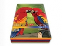 Carton color asortat